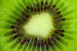 Tác dụng thần kì trên nám, tàn nhang của chiết xuất khổ sâm – Kiwi đã được giới khoa học chứng minh như thế nào?